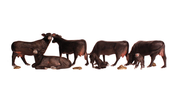 Black Angus Cows - HO Scale